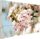 Bloesem in de lente Hout 60x40 cm - Foto print op Hout (Wanddecoratie)