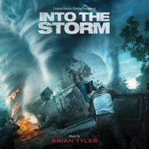 Into The Storm (Import)