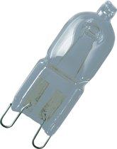 Osram Halopin Eco halogeenlamp 33 W G9 C