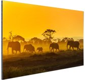 Kudde olifanten bij zonsopkomst Aluminium 120x80 cm - Foto print op Aluminium (metaal wanddecoratie)