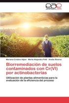 Biorremediacion de Suelos Contaminados Con Cr(vi) Por Actinobacterias