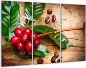 Glasschilderij Keuken | Rood, Groen, Bruin | 120x80cm 3Luik | Foto print op Glas |  F006060