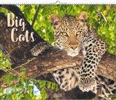 Big Cats Kalender 2020