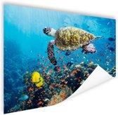 Schildpad bij koraalrif Poster 60x40 cm - Foto print op Poster (wanddecoratie)