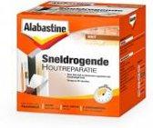 Alabastine Sneldrogende Houtreparatie 500Gr (2 X 250 Gr)