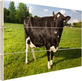 Starende zwart-witte koe Hout 80x60 cm - Foto print op Hout (Wanddecoratie)