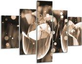 Glasschilderij Tulp | Grijs | 100x70cm 5Luik | Foto print op Glas |  F005155