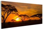 Zonsondergang in de Serengeti Glas 60x40 cm - Foto print op Glas (Plexiglas wanddecoratie)