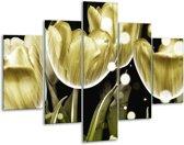 Glasschilderij Tulp | Goud, Zwart | 100x70cm 5Luik | Foto print op Glas |  F005064