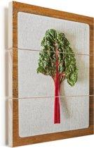 Een kleurrijk blad van een snijbiet op een witte ondergrond Vurenhout met planken 120x160 cm - Foto print op Hout (Wanddecoratie) XXL / Groot formaat!