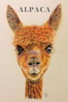 Alpaca Notebook: Alpaca gifts for under 6 pound - Gift for Alpaca and Llama lovers, women and girls - Lined notebook/journal