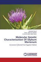 Molecular Genetic Characterization of Silybum Marianum