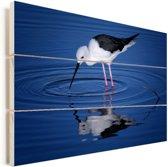 Steltkluut in donkerblauw water Vurenhout met planken 120x80 cm - Foto print op Hout (Wanddecoratie)