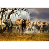 Placemat olifanten 3D 28 x 44 cm