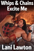 Whips and Chains Excite Me: Erotica Short