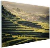 Wijngaard zonsondergang uitzicht Glas 120x80 cm - Foto print op Glas (Plexiglas wanddecoratie)
