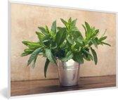 Foto in lijst - Een metalen vaas tot de nok toe gevuld met muntbladeren fotolijst wit 60x40 cm - Poster in lijst (Wanddecoratie woonkamer / slaapkamer)