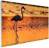 Flamingo silhouet bij zonsondergang Glas 90x60 cm - Foto print op Glas (Plexiglas wanddecoratie)