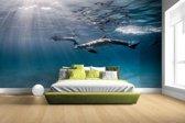 Onderwaterfoto van dolfijnen Fotobehang 380x265