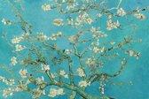 Glas schilderij - Van Gogh - Blauwe bloesem