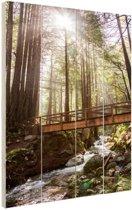 Amerikaans bos  Hout 40x60 cm - Foto print op Hout (Wanddecoratie)