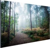 FotoCadeau.nl - Een mistig pad door het bos Aluminium 180x120 cm - Foto print op Aluminium (metaal wanddecoratie)
