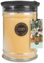 Bridgewater Candle Large Jar Aloha Summer