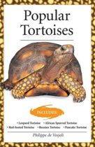 Popular Tortoises (Advanced Vivarium Systems)