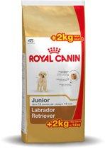 Royal Canin Labrador Retriever Junior - Hondenvoer - 12 kg + 2 kg