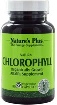 Natural Chlorophyll (90 Veggie Caps) - Nature's Plus