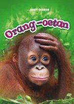 Baby-dieren - Orang-oetan