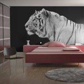 Fotobehang - Witte tijger