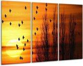 Canvas schilderij Vogels | Geel, Zwart | 120x80cm 3Luik