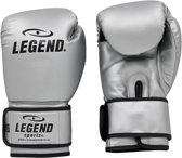 Legend PowerFit & Protect Bokshandschoenen Zilver  10 oz