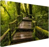 FotoCadeau.nl - Mooi regenwoud en jungle Canvas 60x40 cm - Foto print op Canvas schilderij (Wanddecoratie)