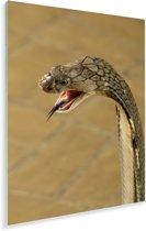 Konings cobra met een dreigende blik Plexiglas 80x120 cm - Foto print op Glas (Plexiglas wanddecoratie)