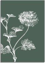 Vintage bloem blad poster Designclaud- Groen - Puur Natuur Botanical - Groen - A2 + Fotolijst wit