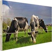 FotoCadeau.nl - Kudde grazende koeien Hout 80x60 cm - Foto print op Hout (Wanddecoratie)