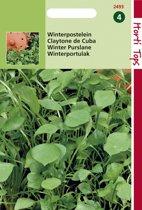 Hortitops Zaden - Postelein Winter / Claytonia Perfoliata