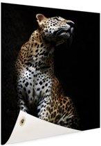 Luipaard portret  Tuinposter 100x200 cm - Foto op Tuinposter / Schilderijen voor buiten (tuin decoratie)