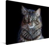 Maine Coon kat met zwarte achtergrond Canvas 140x90 cm - Foto print op Canvas schilderij (Wanddecoratie woonkamer / slaapkamer) / Huisdieren Canvas Schilderijen