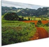 Een weg door het agrarische gebied vallei van Viñales in Cuba Plexiglas 60x40 cm - Foto print op Glas (Plexiglas wanddecoratie)
