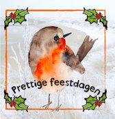 Kerstkaart - vogel - feestdagen - kerst - set van 5 kerstkaarten