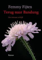 Terug naar Bandung