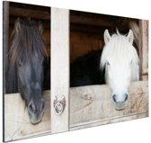 Paarden in de stal Aluminium 90x60 cm - Foto print op Aluminium (metaal wanddecoratie)