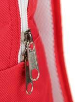 Ajax rugtas - rood/wit
