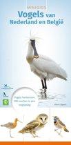 Minigids - Minigids vogels van Nederland en België