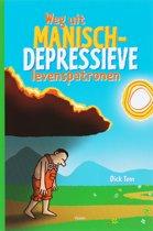 Weg Uit Manisch-Depressieve Levenspatronen