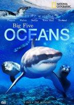 NG. Big Five Oceans