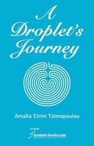 A Droplet's Journey